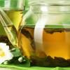 Fitoterapia: plantas medicinales para la salud