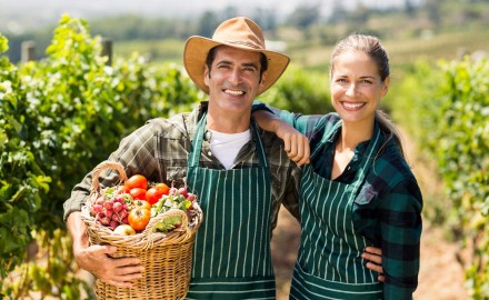 Almacenamiento y Conservación de Frutas y Hortalizas