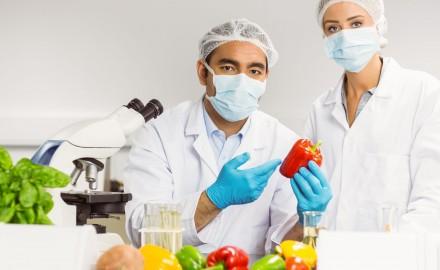 Auditores Internos en Organizaciones Elaboradoras y Manipuladoras de Alimentos