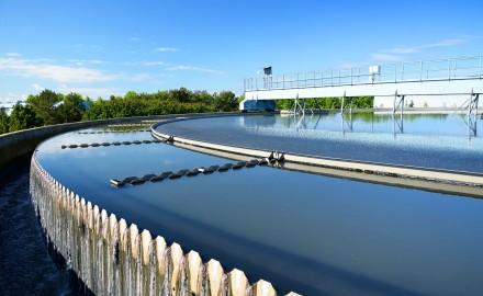 Gestión Ambiental de los Efluentes Líquidos del Agro y de la Industria