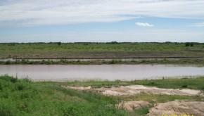 Manejo y gestión predial y regional del agua