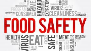 Los Alimentos, el Covid y las Infecciones