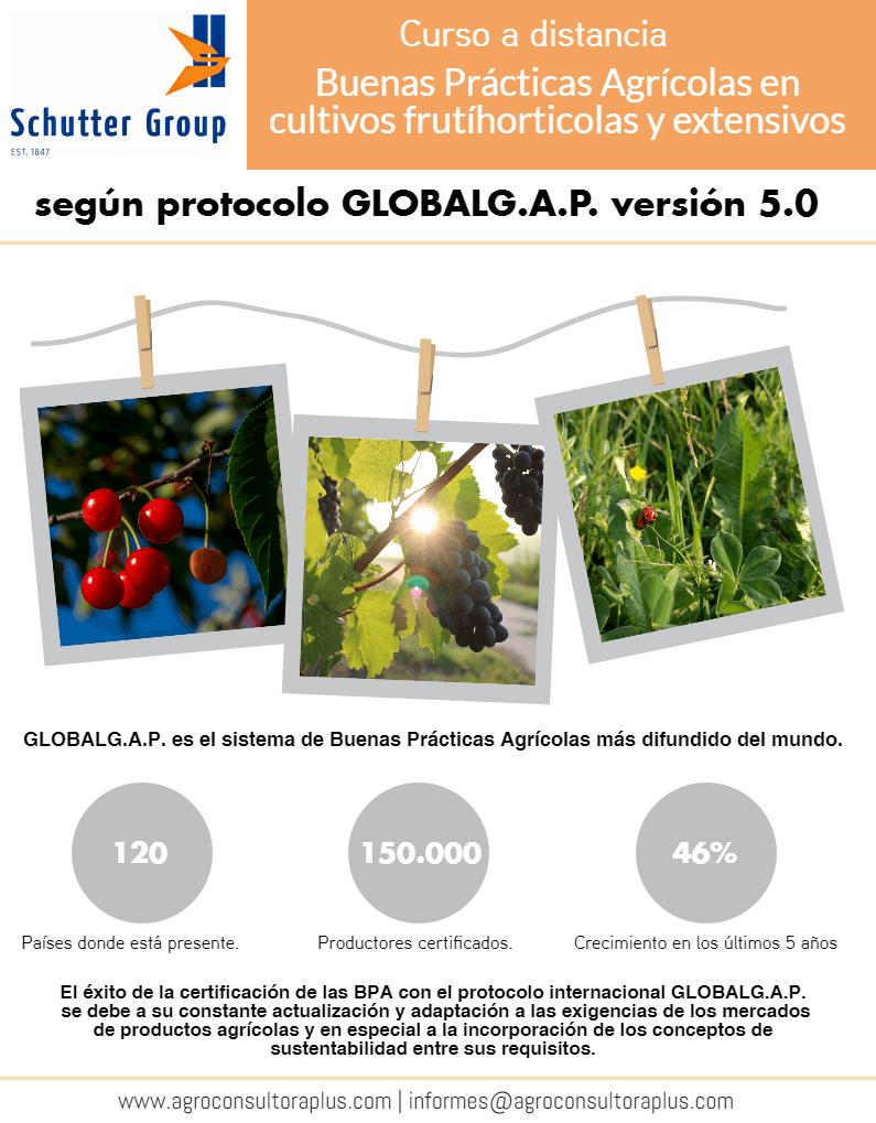 El éxito de la certificación de las BPA con el protocolo internacional GLOBALG.A.P. se debe a su constante actualización y adaptación a las exigencias de los mercados de productos agrícolas y en especial a la incorporación de los conceptos de sustentabilidad entre sus requisitos.