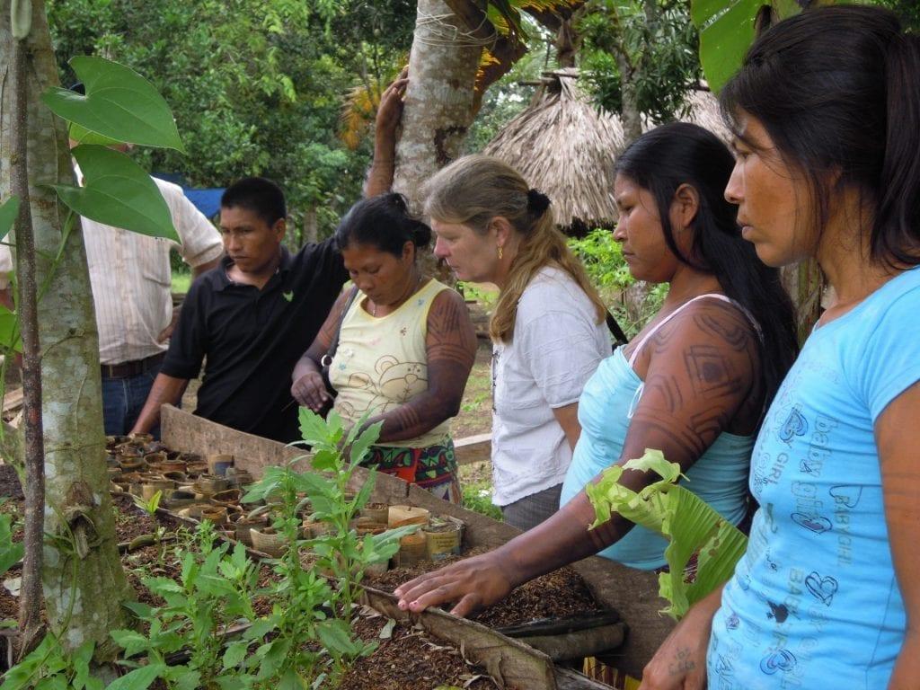 Comunidad de pueblos originarios, Panamá)