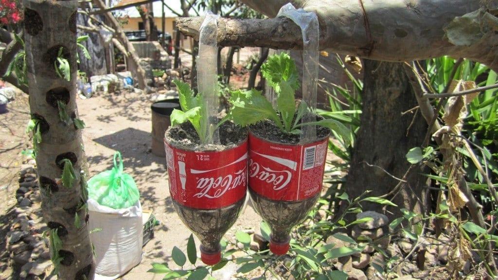 Ejemplos de contenedores reciclados) Paraguay