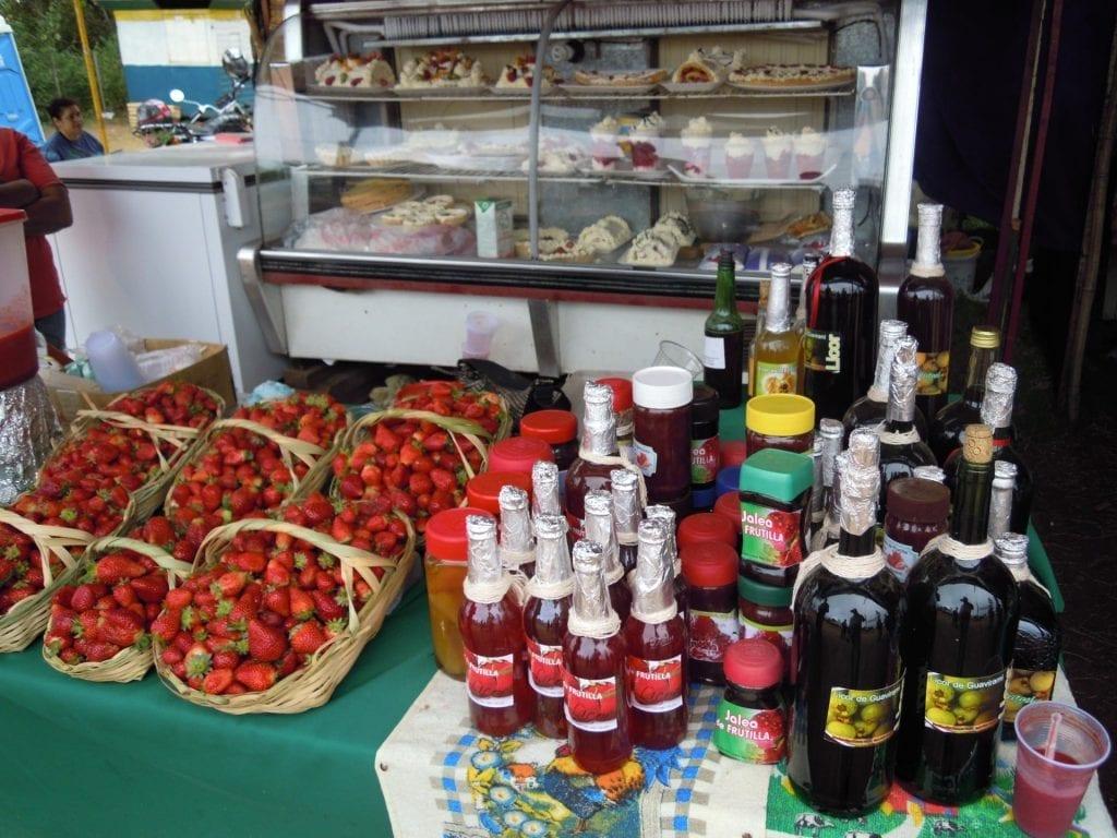 Microemprendedora de frutillas hidropónicas en Paraguay
