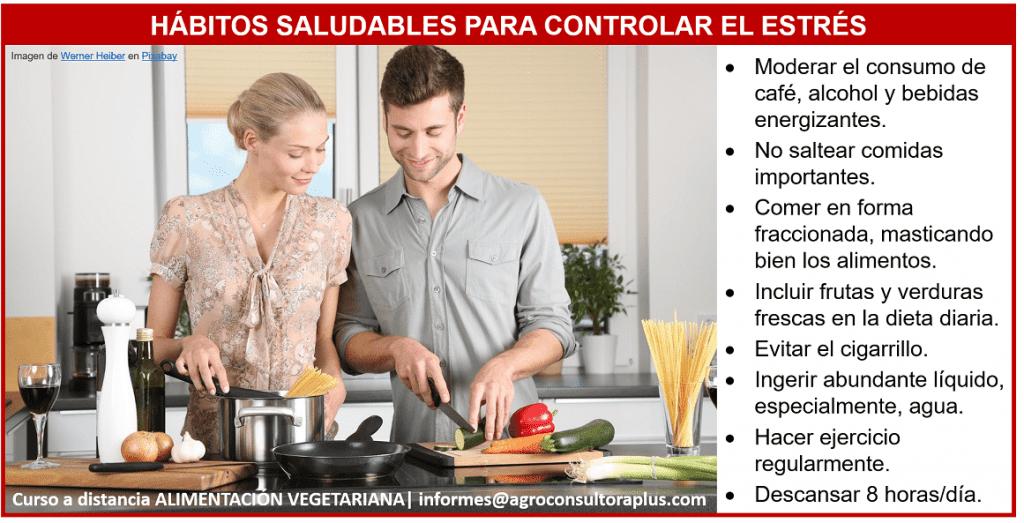 Alimentación Vegetariana en tiempos de estrés - Curso a Distancia de Alimentación Vegetariana