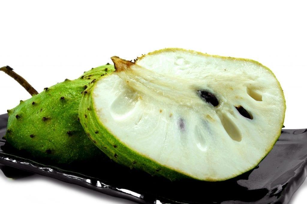 Investigadoras de la Universidad de Sevilla están analizando el rol del extracto acuoso de hojas de Graviola (Annona muricata L.), un árbol que también da un fruto comestible conocido como guanábana, para prevenir los síntomas asociados a la fibromialgia.
