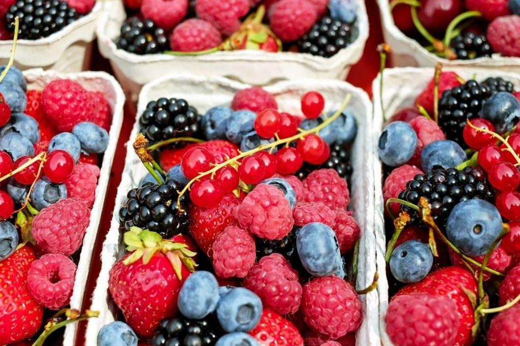 Cosecha y Poscosecha de Frutas y Hortalizas en Argentina: Berries - Frutos del Bosque