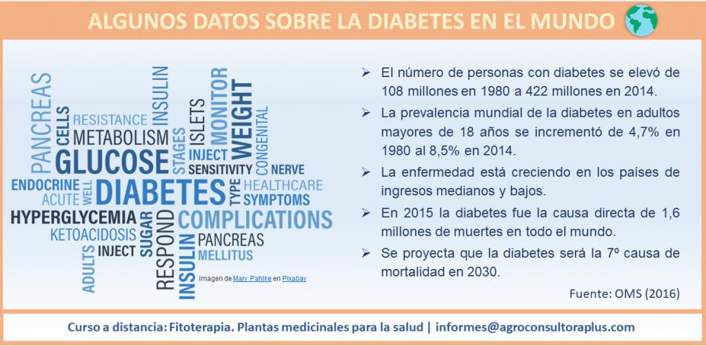 Diabetes y Plantas Medicinales