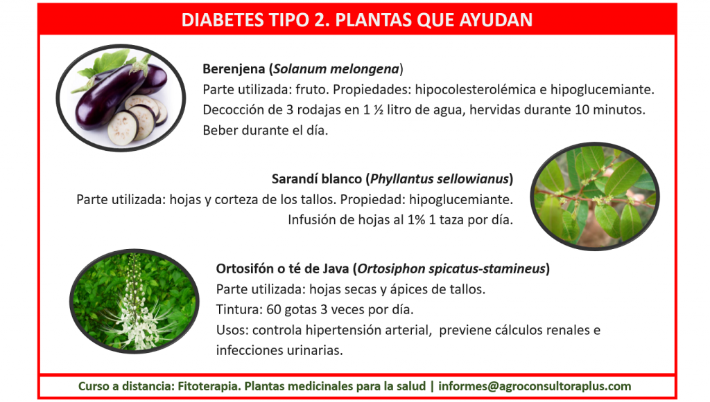 Mejorando el estilo de vida con algunas medidas simples podemos prevenir la Diabetes de tipo 2 o retrasar su aparición: