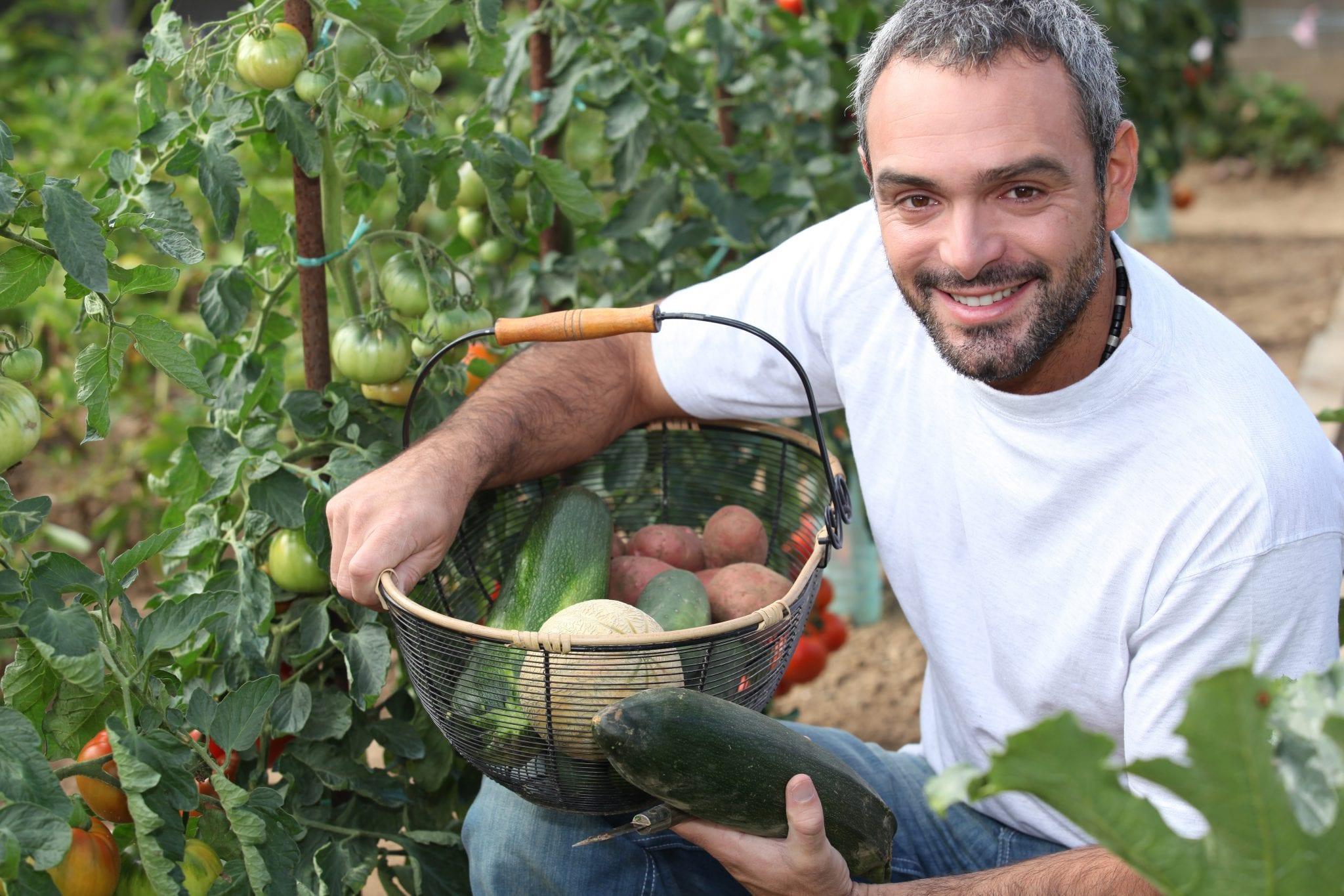 Curso de Agricultura Urbana