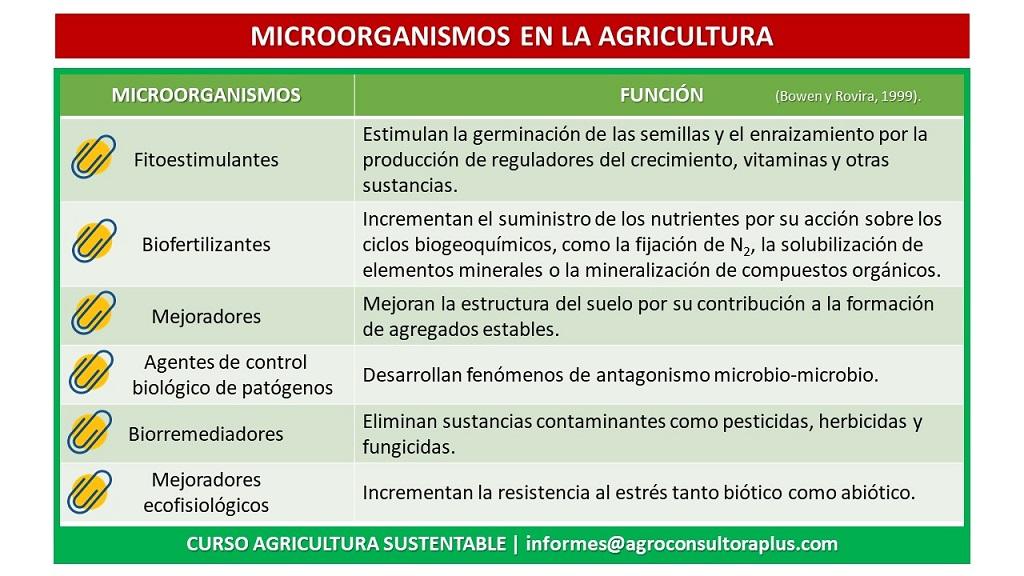 Cuando la agricultura tiene la necesidad de adoptar medidas conservacionistas, los microorganismos y sus relaciones con las actividades del Hombre juegan un rol sustancial. Estos microorganismos cumplen diferentes funciones ya que pueden fijar el nitrógeno atmosférico libremente en el suelo o vivir en simbiosis con la planta (nódulos de las leguminosas); suministrando a las plantas, a través de procesos de mutua colaboración, nutrientes que éstas necesitan para completar su ciclo productivo (micorrizas); solubilizar diferentes nutrientes del suelo haciéndolos asequibles a las plantas; producir diferentes fitohormonas, las cuales favorecen, por ejemplo, el enraizamiento y desarrollo de las plantas; poner a disposición de las plantas determinados microelementos, tal como el hierro, facilitando su absorción por las plantas.